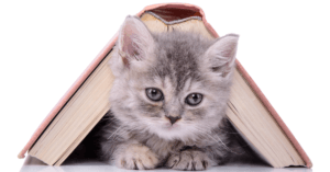 7 Great Books for Cat Lovers of All Ages